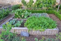 Agriculture en ville